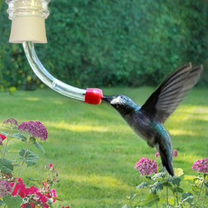 DIY Hummingbird Feeder Tube Insert