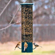 Magnet Squirrel Proof Bird Feeder