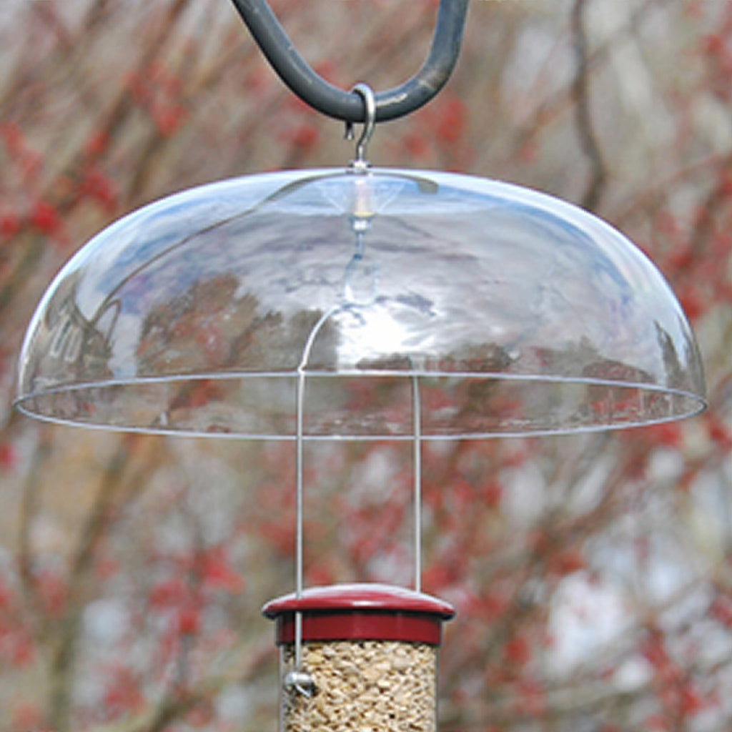 Universal Bird Feeder Weather Dome