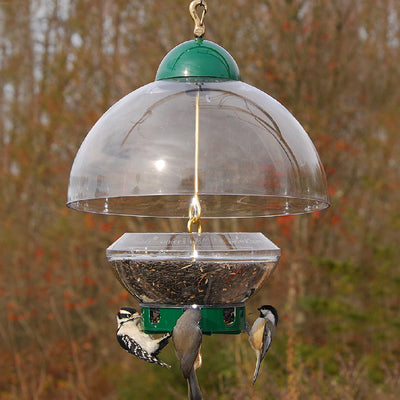 Big Top Seed Bowl Bird Feeder