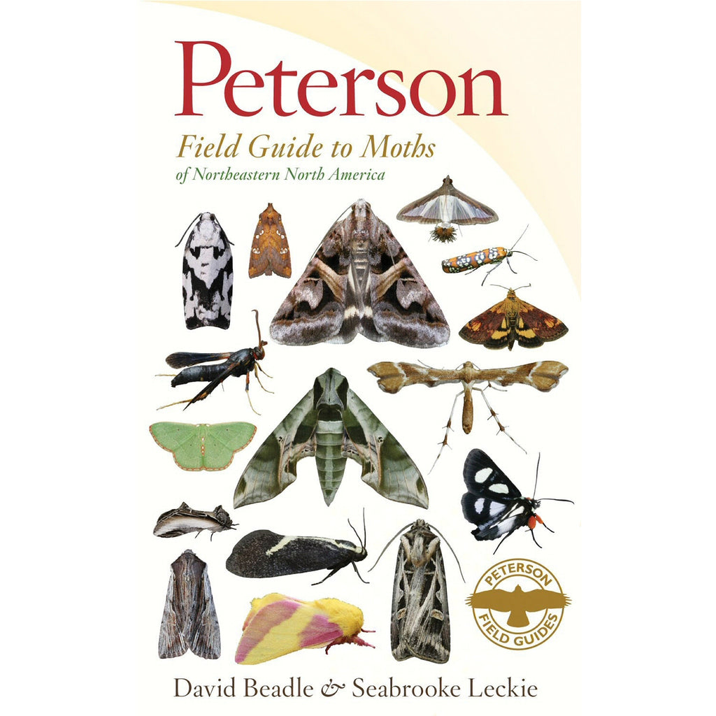 Peterson Field Guide Moths Northeastern NA