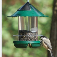 Chickadee Bird Feeder - Green