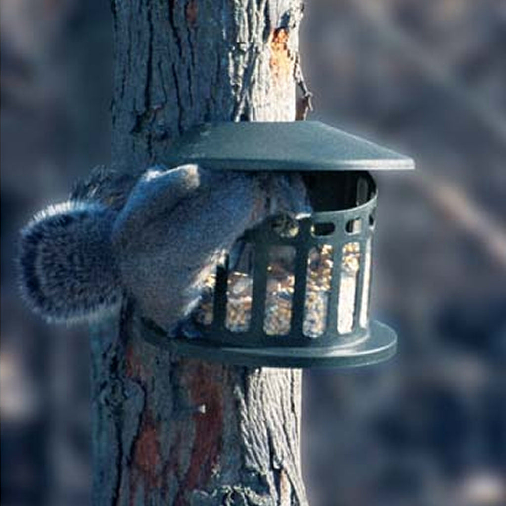 Squirrel Diner 2 Metal Feeder