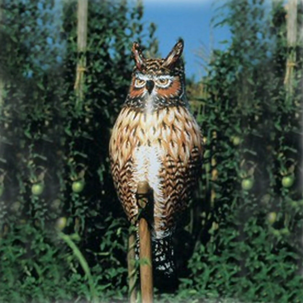 Inflatable Owl Decoy Deterrent
