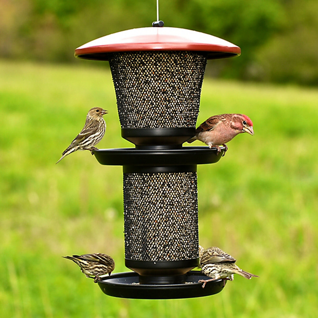 Double Tray Mesh Bird Feeder