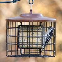 Squirrel-X Proof Double Suet Bird Feeder
