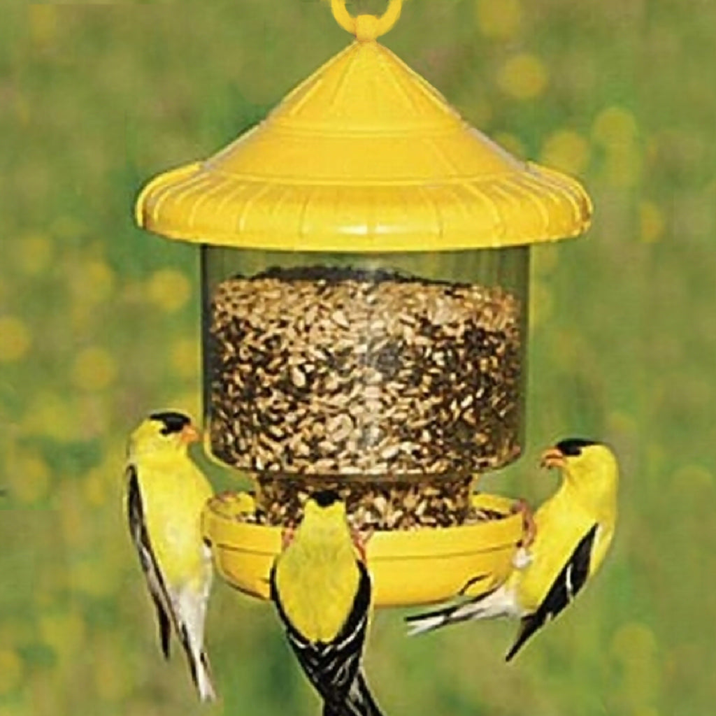 Clingers Only Bird Feeder Yellow