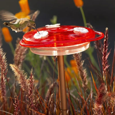3 in 1 Hummingbird Feeder 6 oz