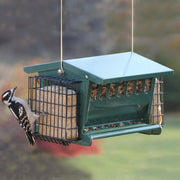 Mini Seeds 'n More Bird Feeder