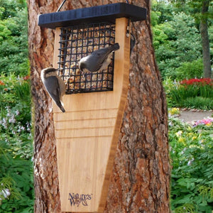Tail Prop Bamboo Suet Bird Feeder