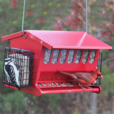 Seed 'n More Red Bird Feeder