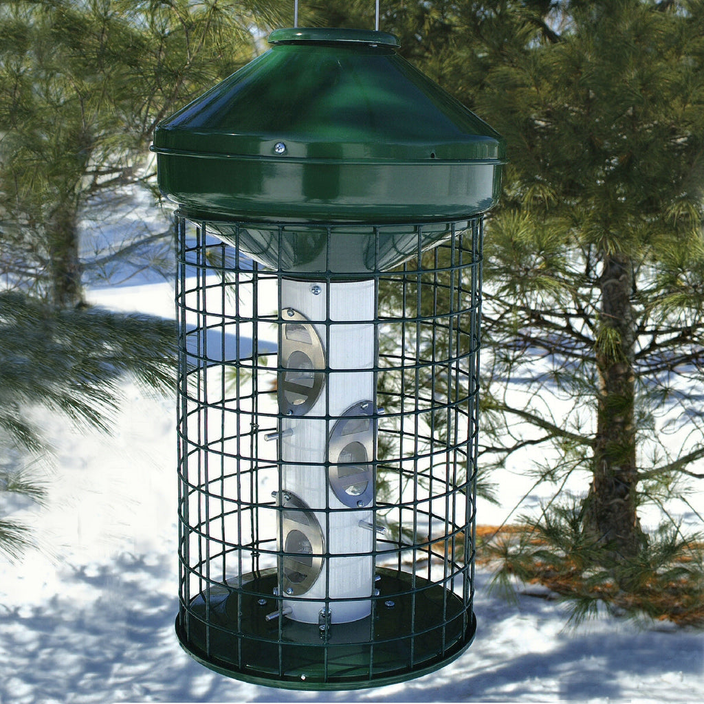 Avian Caged Mixed Seed Bird Feeder 3 Gal