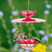 HummBlossom Bird Feeder Accessory Kit
