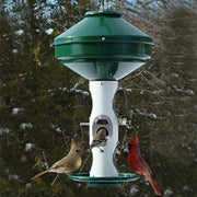 Avian Mixed Seed Bird Feeder 3 Gal