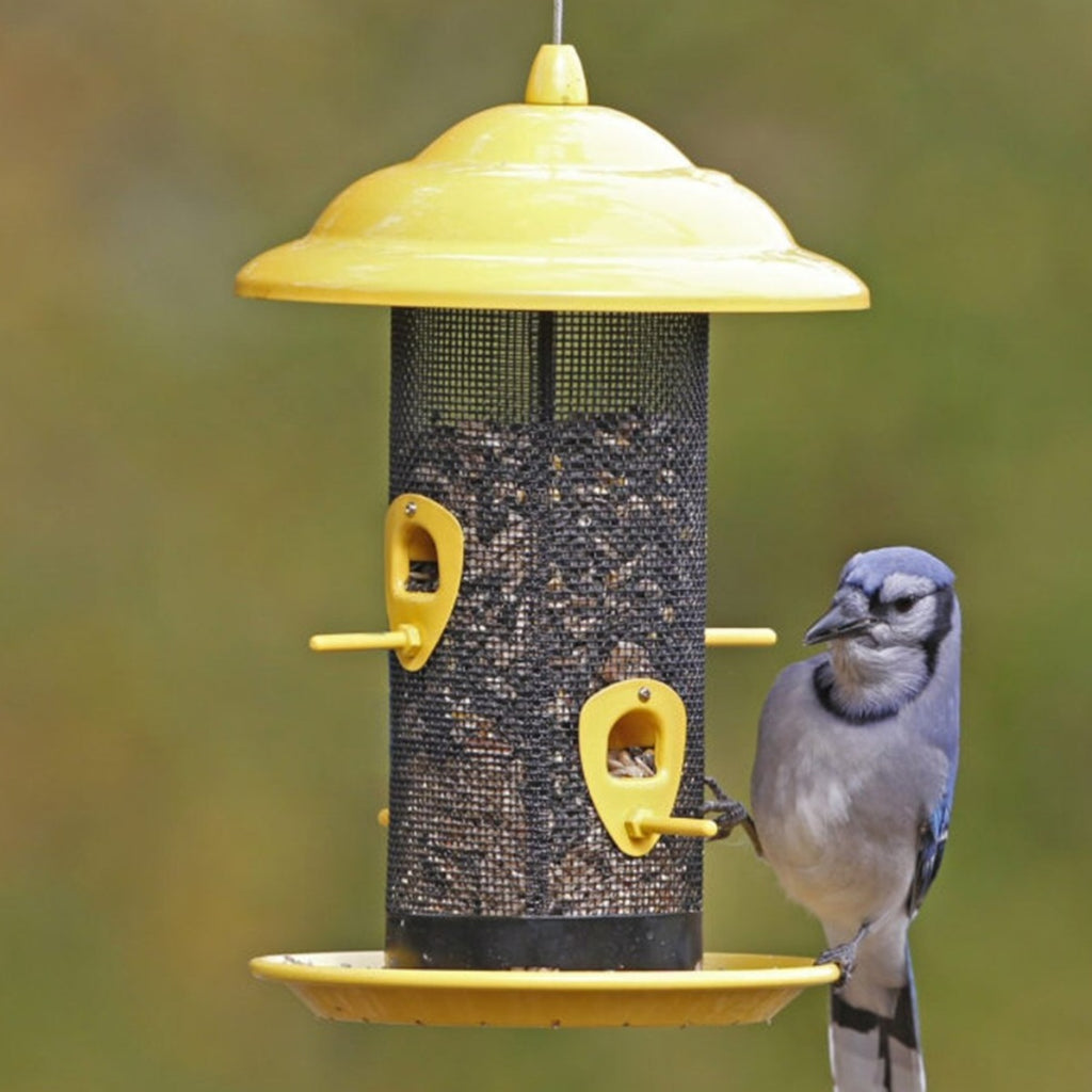 Sedona Screen Metal Bird Feeder