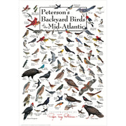 Petersons Backyard Birds of the Mid-Atlantic Poster