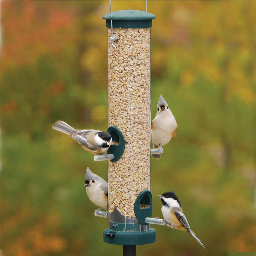 "Quick Clean Tube Bird Feeder - 16"" Spruce"