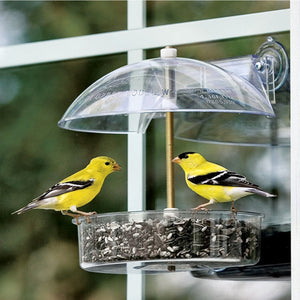 Winner Multi-Purpose Window Bird Feeder