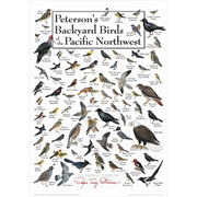Petersons Backyard Birds of the Pacific Northwest Poster