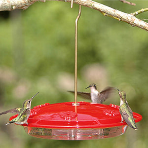 HummZinger Excel Hummingbird Feeder - Momma's Home Store