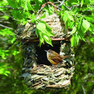 Acorn Roosting Pocket Bird House