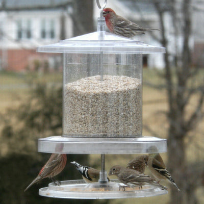 All Weather Hopper Bird Feeder 6 Qt