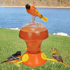 Oriole Nectar Bird Feeder 52 oz - Momma's Home Store