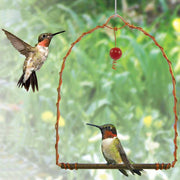 Copper Arch Decorative Bird Swing