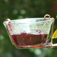 Fruit & Jelly Feeder Replacement Cup