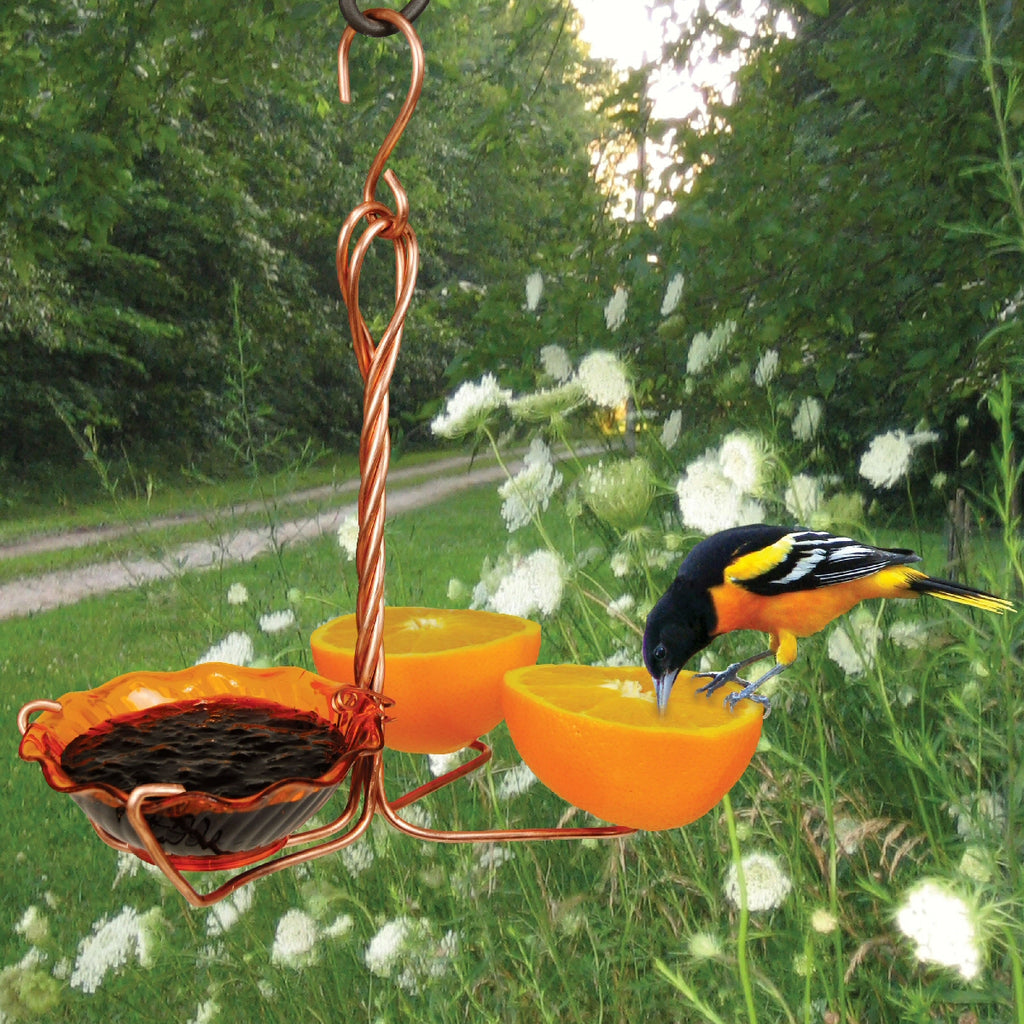 Copper Double Fruit Spiral & Jelly Oriole Feeder