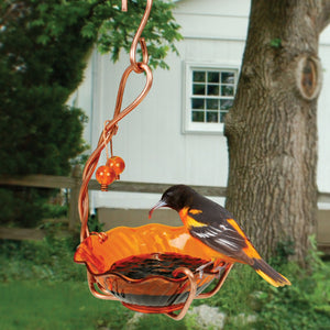Copper Oriole Jelly Bird Feeder