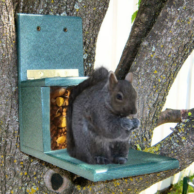 Recycled Lunch Box Squirrel Feeder
