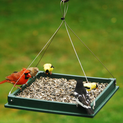 Hanging Platform Recycled Feeder 12 inch