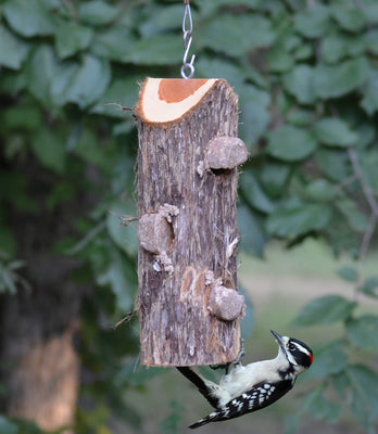 3 Plug Suet Log Without Perches - Momma's Home Store