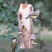 Cedar Suet Log Feeder w/6 Perches