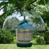 Bird Feeder Hanging Baffle - Clear 12 inch