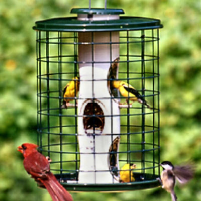 Avian Caged Mixed Seed Bird Feeder 2 qt
