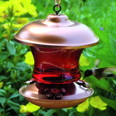 Copper & Ruby Glass Hummingbird Feeder - Momma's Home Store