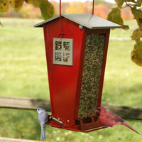 Snack Shop Feeder - Momma's Home Store