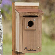 Coppertop Bluebird House - Momma's Home Store