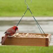 Audubon 3 in 1 Platform Bird Feeder