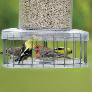 All Weather Feeder Cage Accessory