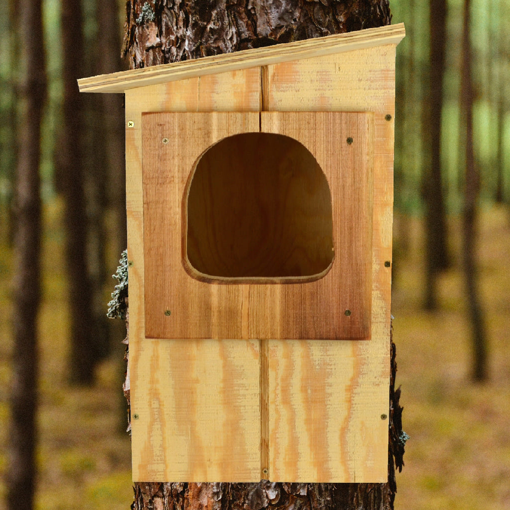 Barred Owl Nesting Box Birdhouse