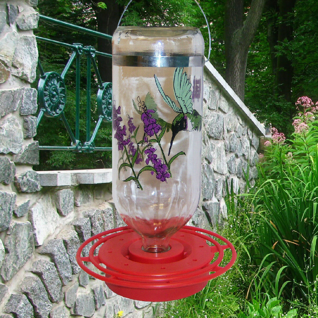 Black-Chinned Glass Hummingbird Feeder 32 oz