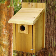 Bluebird Nest Box Birdhouse
