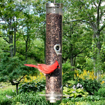 Classic Sunflower/Mixed Seed Feeder 20 inch