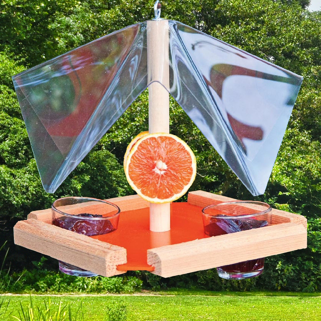 Oriole Buffet Fruit & Jelly Bird Feeder