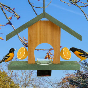 Oriole Cedar Fruit & Jelly Bird Feeder