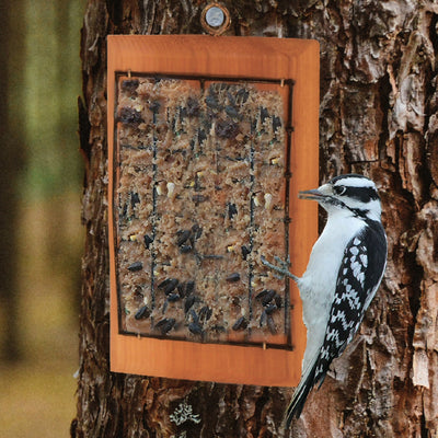 Peanut Butter Cedar Bird Feeder