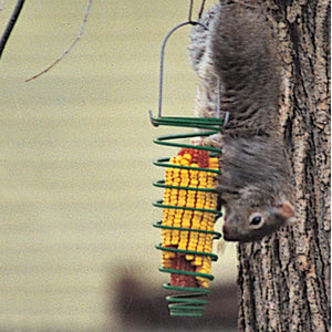 Corn Trapper Squirrel Feeder